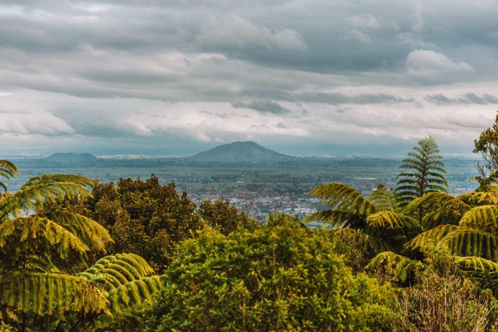 Cambridge, Waikato, New Zealand