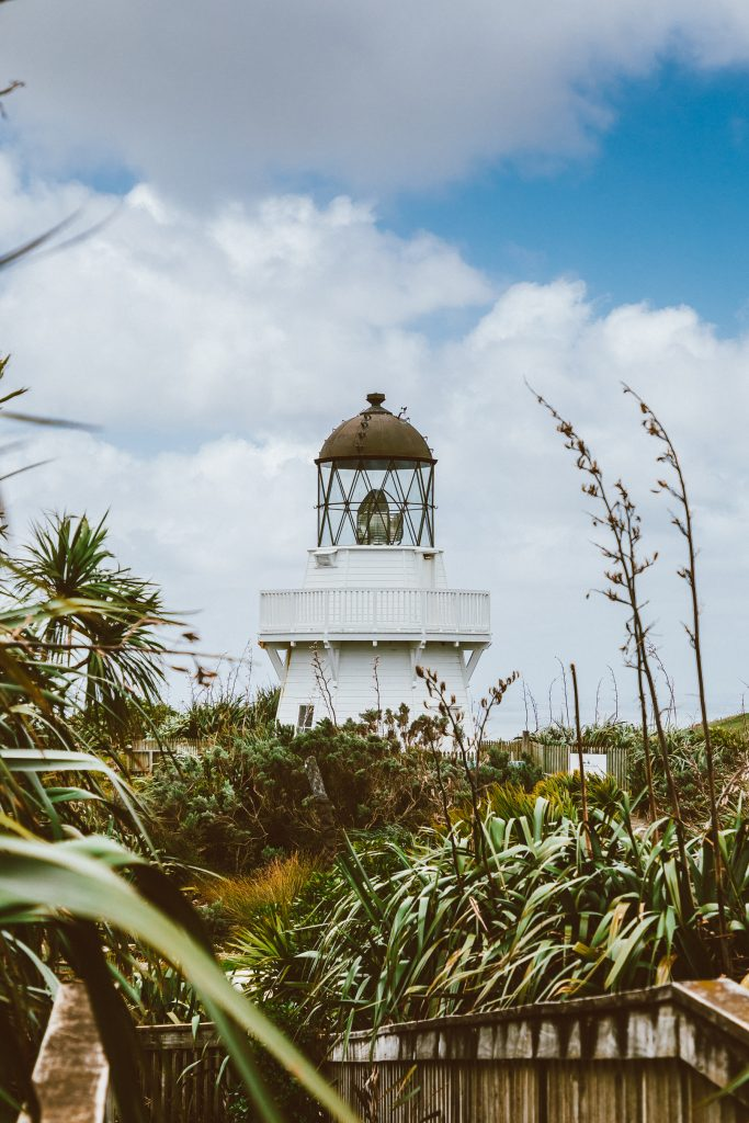 Top Auckland Attractions