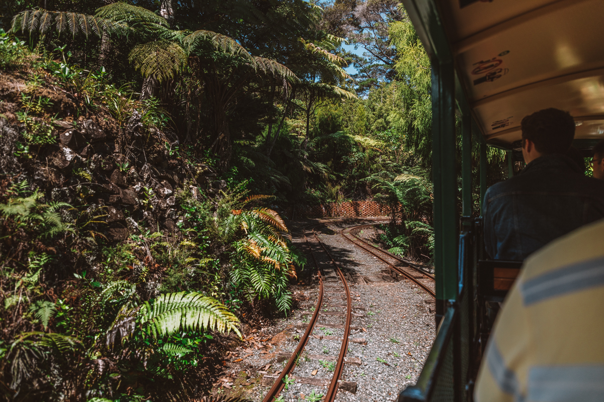 thestylejungle-New-Zealand-Coromandel-Peninsula-guide-driving-creek-railway-travel-blog