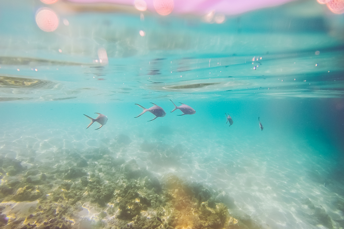 thestylejungle_Maldives_Dhigali_resort_travelblog_snorrkelling